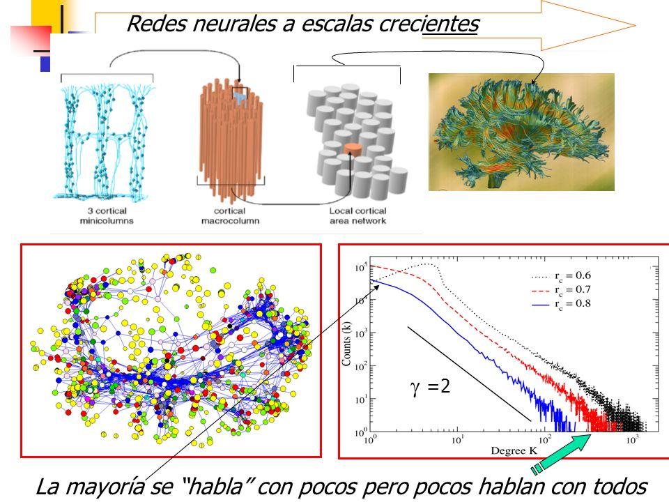 Redes neurales a escalas crecientes