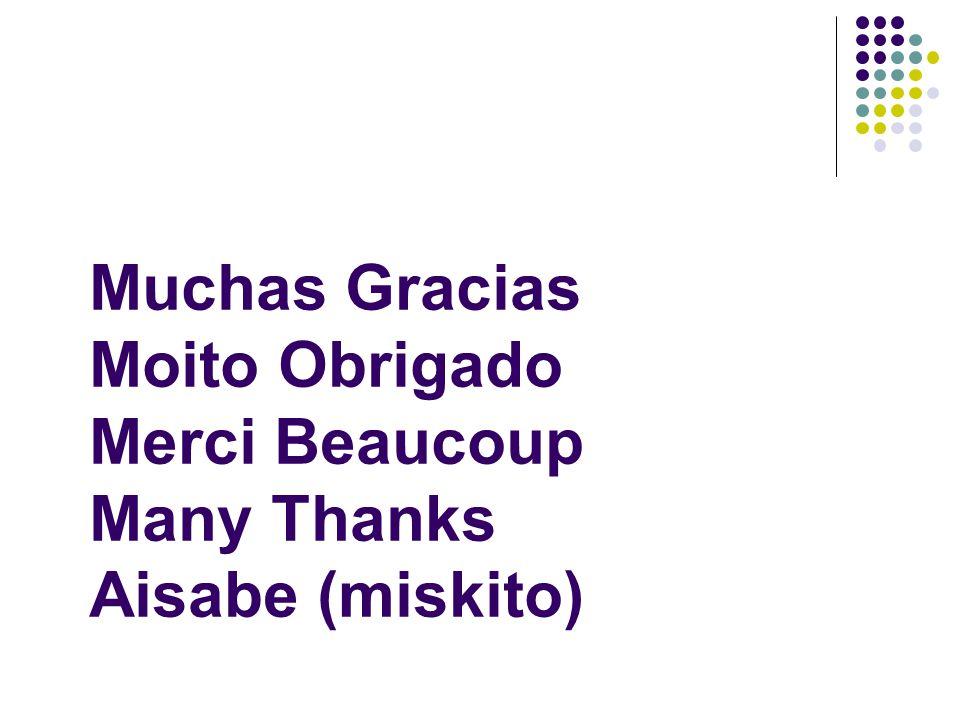 Muchas Gracias Moito Obrigado Merci Beaucoup Many Thanks Aisabe (miskito)