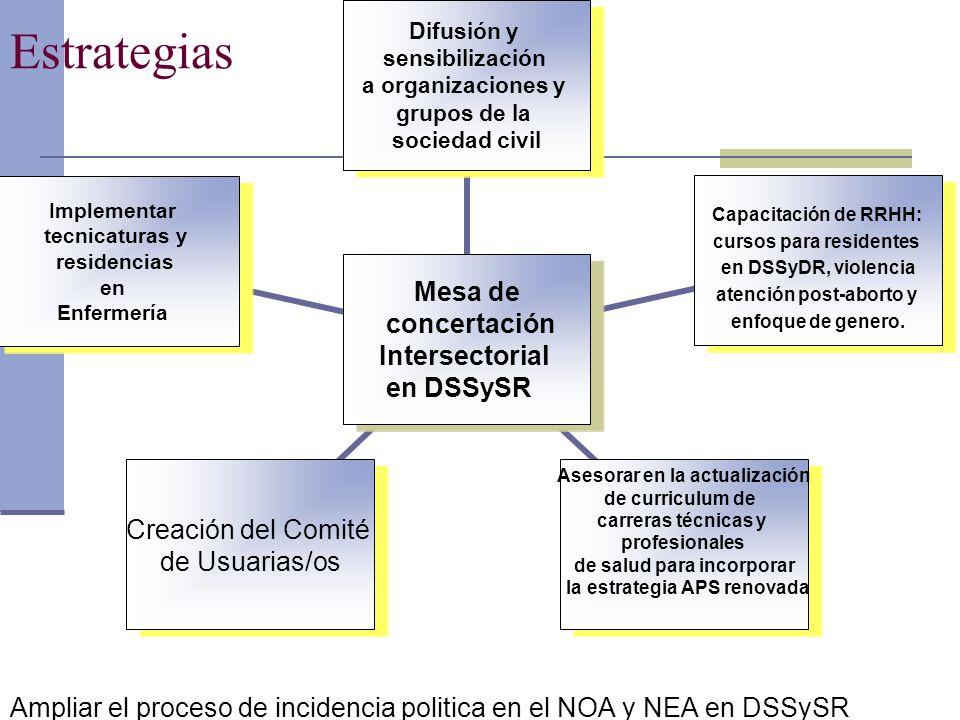 Estrategias Ampliar el proceso de incidencia politica en el NOA y NEA en DSSySR