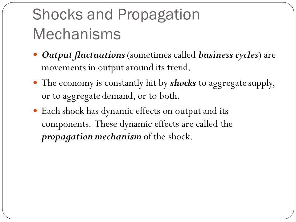 Shocks and Propagation Mechanisms