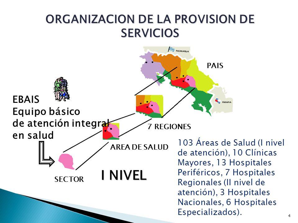 ORGANIZACION DE LA PROVISION DE SERVICIOS