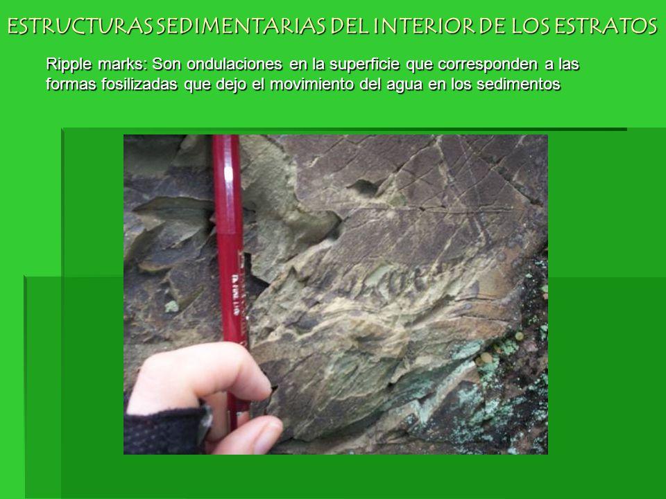 ESTRUCTURAS SEDIMENTARIAS DEL INTERIOR DE LOS ESTRATOS