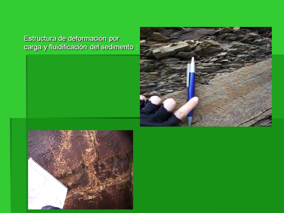 Estructura de deformación por carga y fluidificación del sedimento :