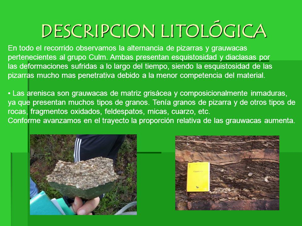 DESCRIPCION LITOLÓGICA