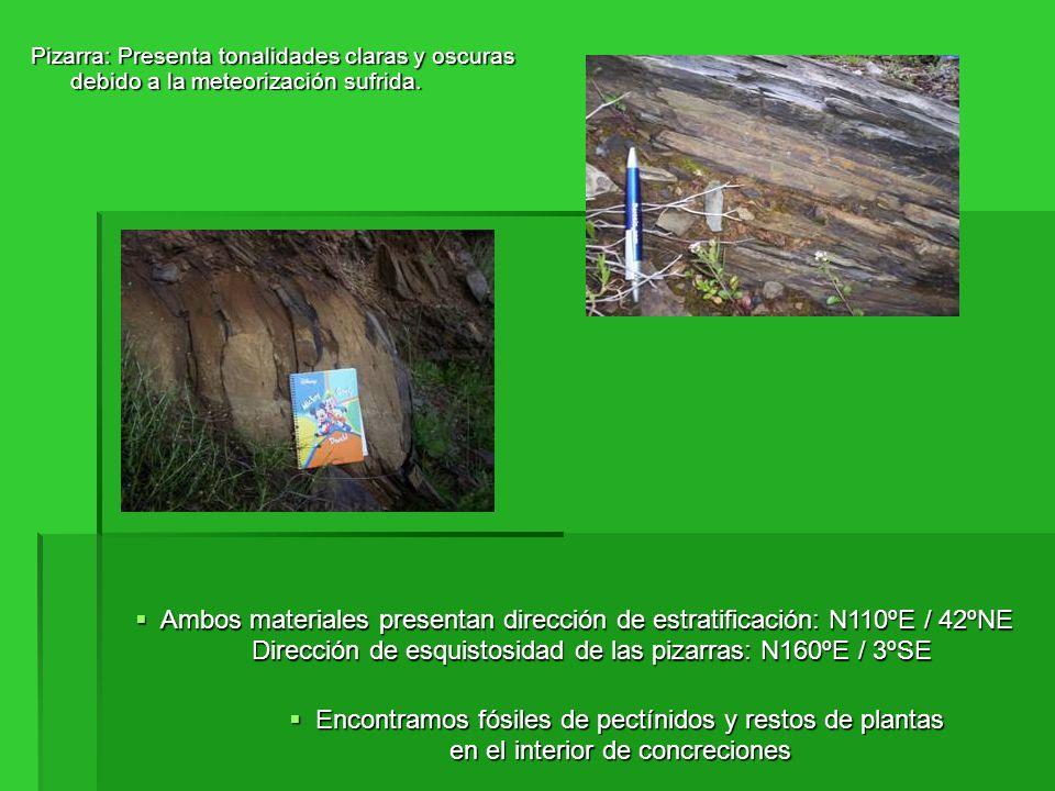 Dirección de esquistosidad de las pizarras: N160ºE / 3ºSE