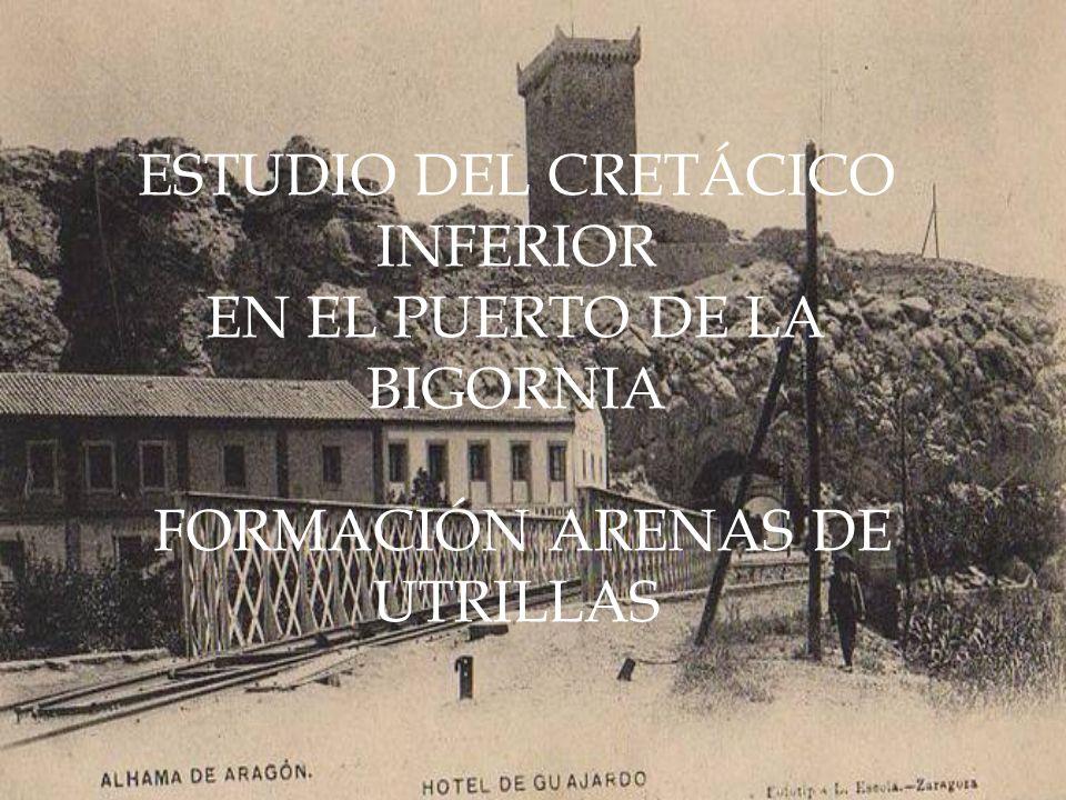 ESTUDIO DEL CRETÁCICO INFERIOR EN EL PUERTO DE LA BIGORNIA FORMACIÓN ARENAS DE UTRILLAS