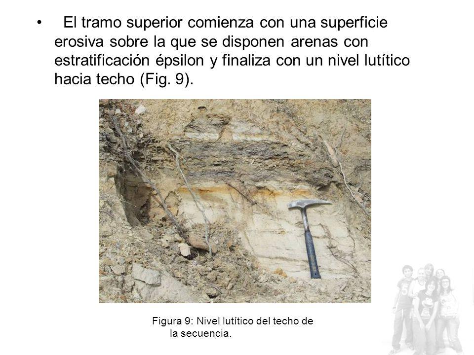 El tramo superior comienza con una superficie erosiva sobre la que se disponen arenas con estratificación épsilon y finaliza con un nivel lutítico hacia techo (Fig. 9).
