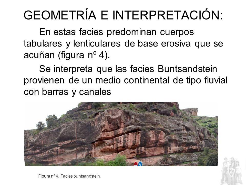 GEOMETRÍA E INTERPRETACIÓN: