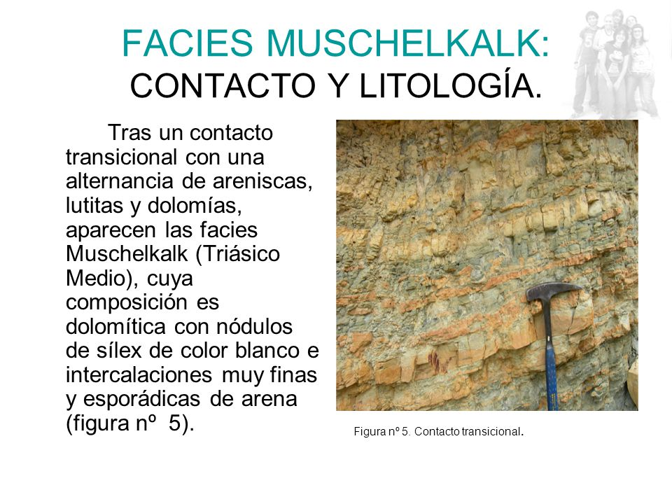 FACIES MUSCHELKALK: CONTACTO Y LITOLOGÍA.