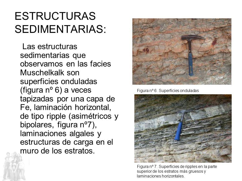 ESTRUCTURAS SEDIMENTARIAS: