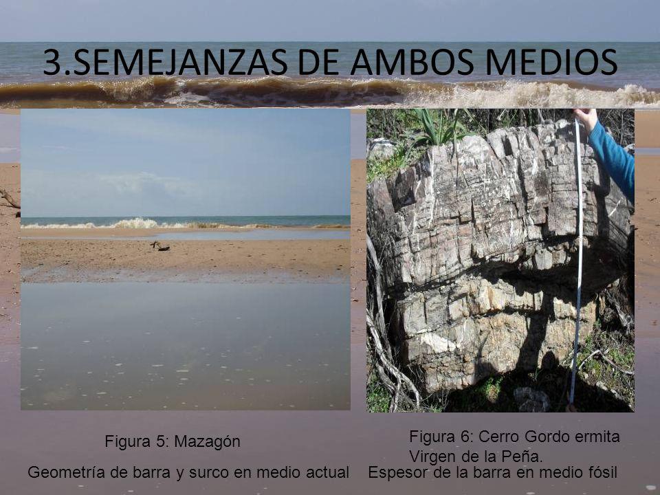 3.SEMEJANZAS DE AMBOS MEDIOS