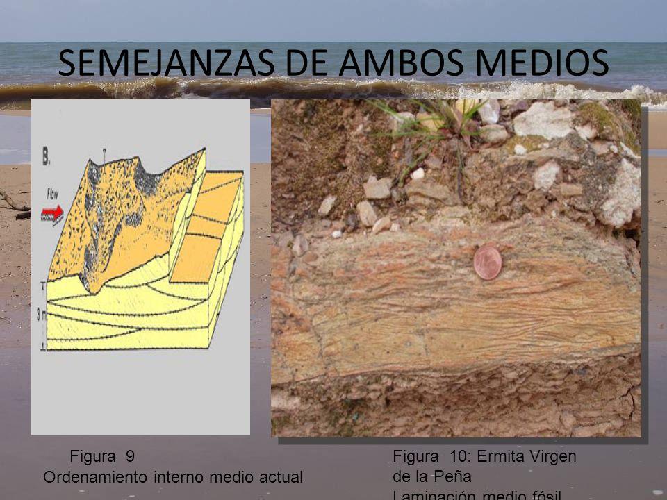 SEMEJANZAS DE AMBOS MEDIOS