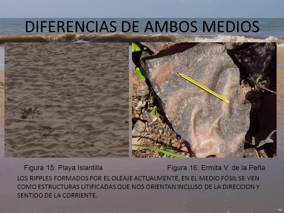 DIFERENCIAS DE AMBOS MEDIOS