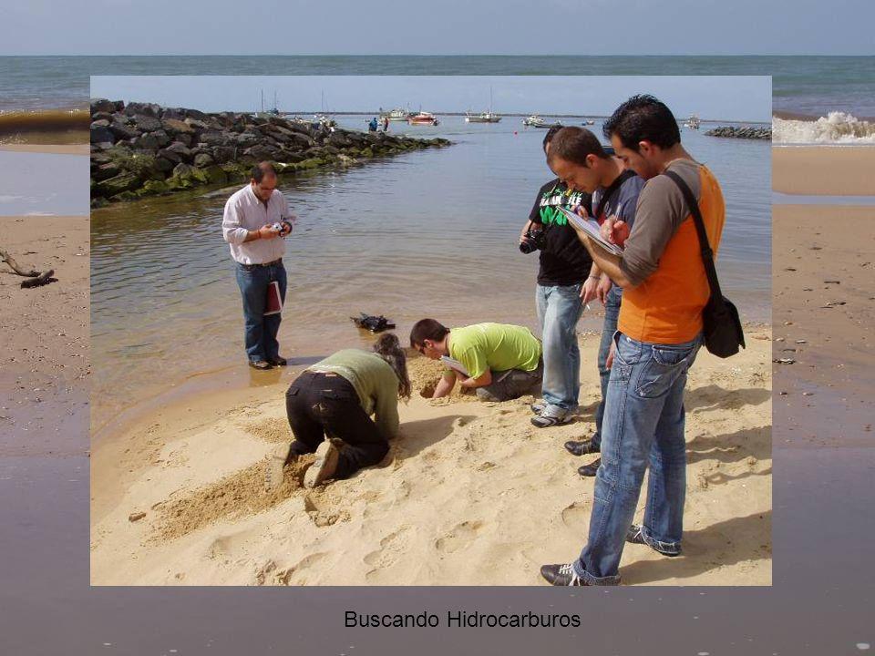Buscando Hidrocarburos
