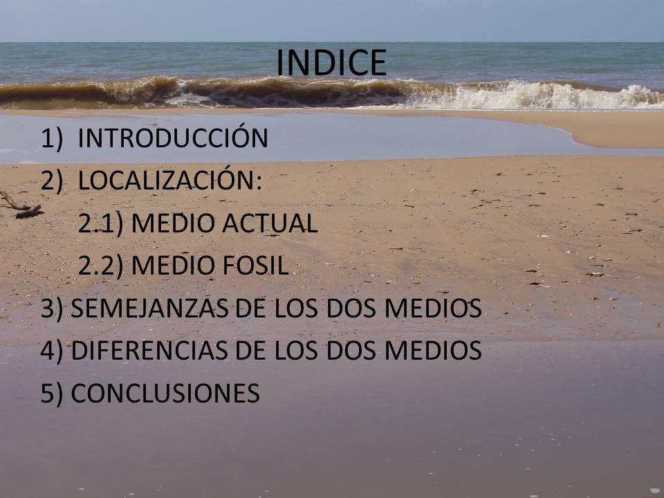 INDICE INTRODUCCIÓN LOCALIZACIÓN: 2.1) MEDIO ACTUAL 2.2) MEDIO FOSIL