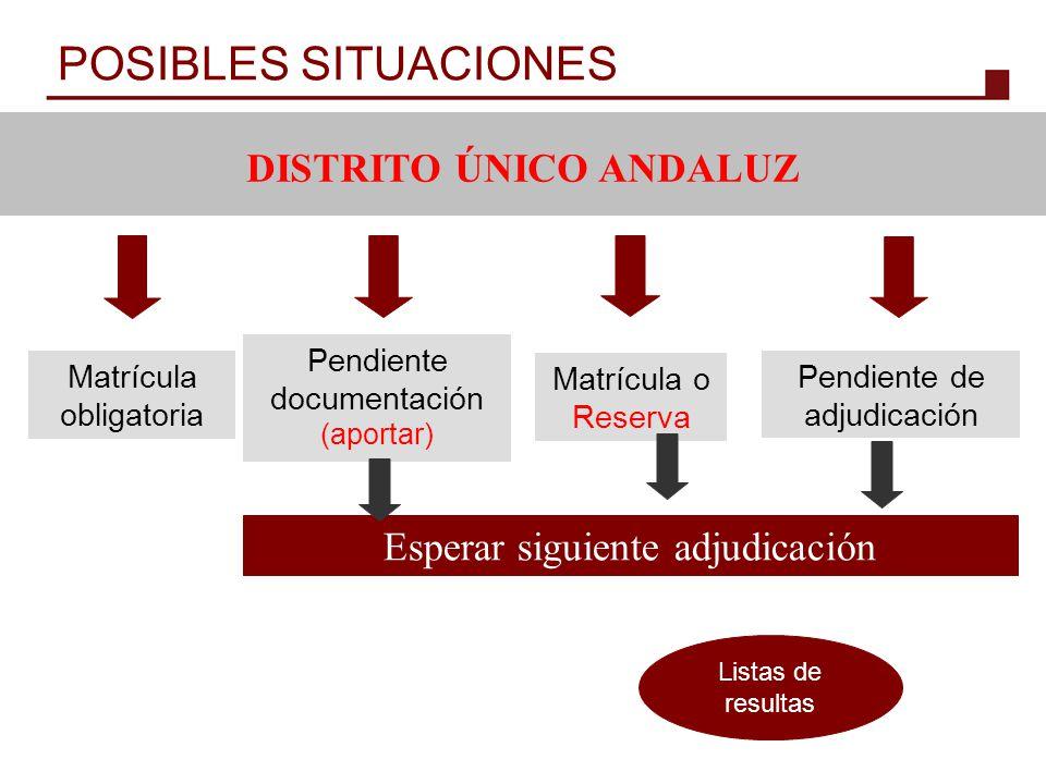 POSIBLES SITUACIONES DISTRITO ÚNICO ANDALUZ