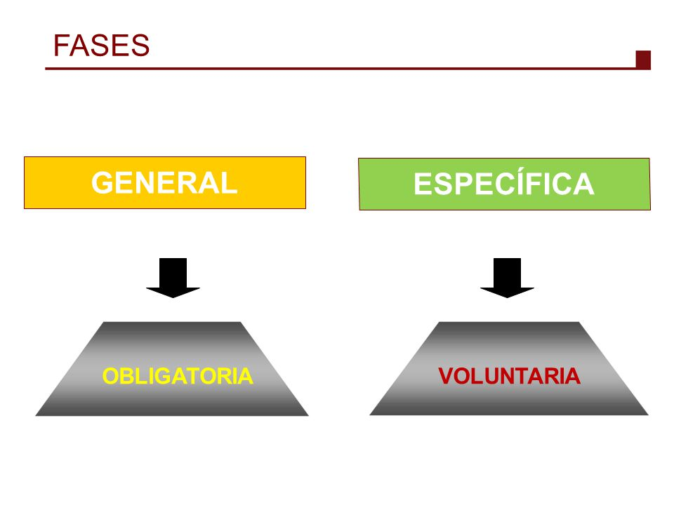 FASES GENERAL ESPECÍFICA OBLIGATORIA VOLUNTARIA 5 5 5