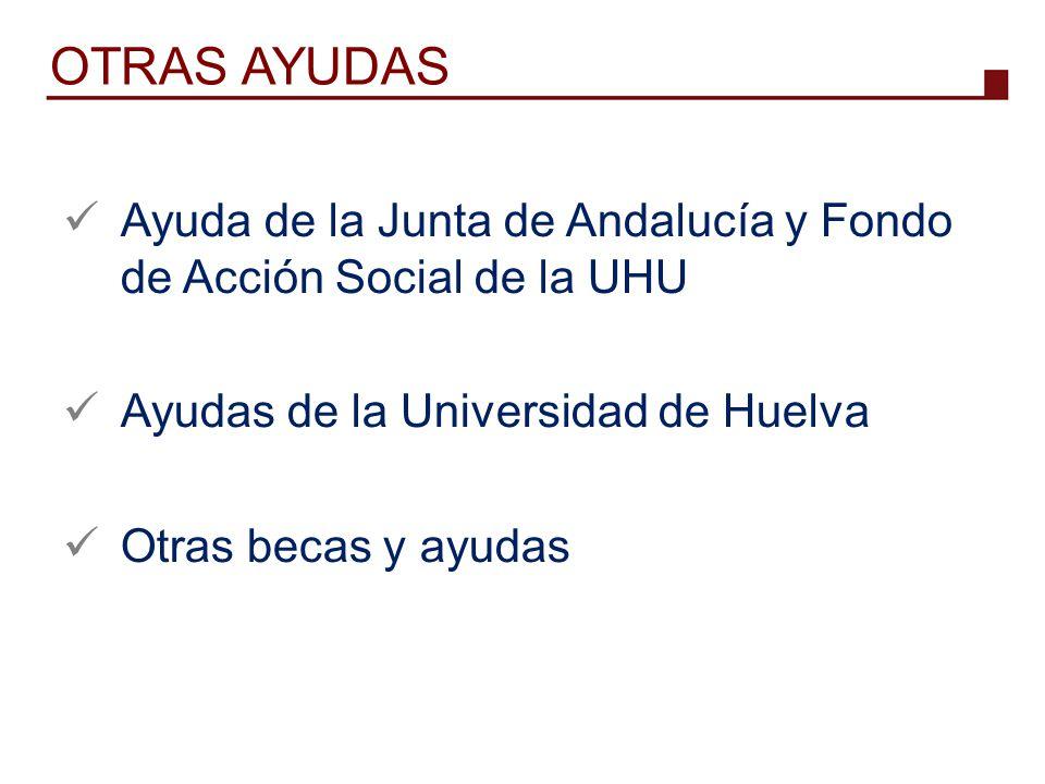 OTRAS AYUDAS Ayuda de la Junta de Andalucía y Fondo de Acción Social de la UHU. Ayudas de la Universidad de Huelva.