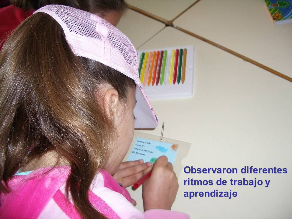 Observaron diferentes ritmos de trabajo y aprendizaje