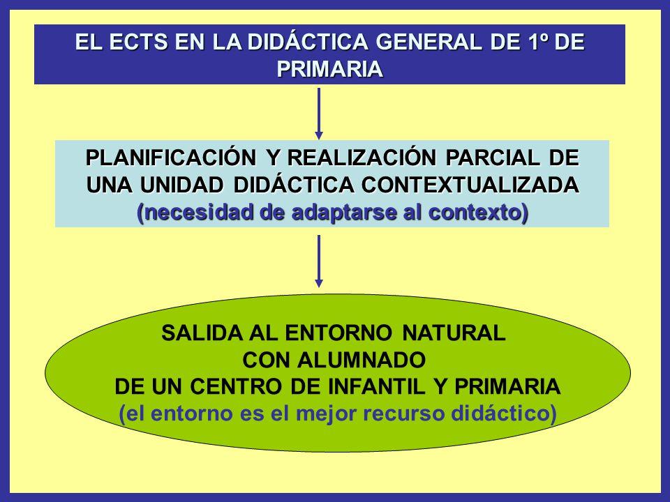 EL ECTS EN LA DIDÁCTICA GENERAL DE 1º DE PRIMARIA