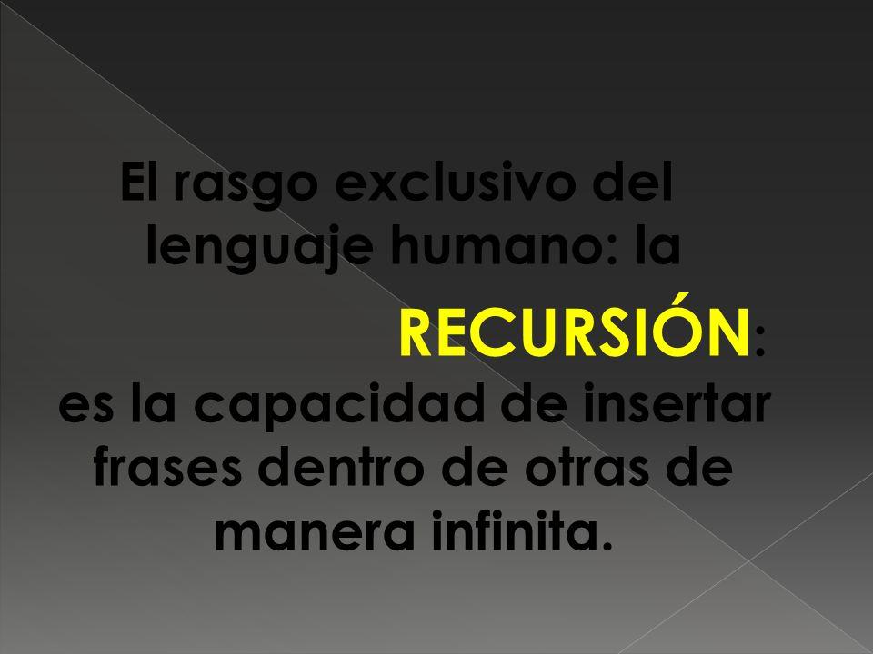 El rasgo exclusivo del lenguaje humano: la RECURSIÓN: es la capacidad de insertar frases dentro de otras de manera infinita.