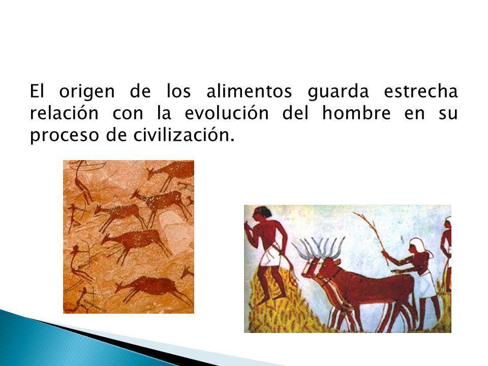 El origen de los alimentos guarda estrecha relación con la evolución del hombre en su proceso de civilización.