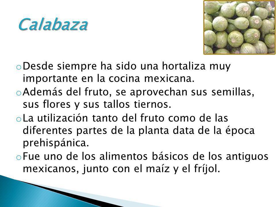 Calabaza Desde siempre ha sido una hortaliza muy importante en la cocina mexicana.