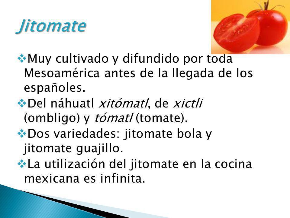 Jitomate Muy cultivado y difundido por toda Mesoamérica antes de la llegada de los españoles.