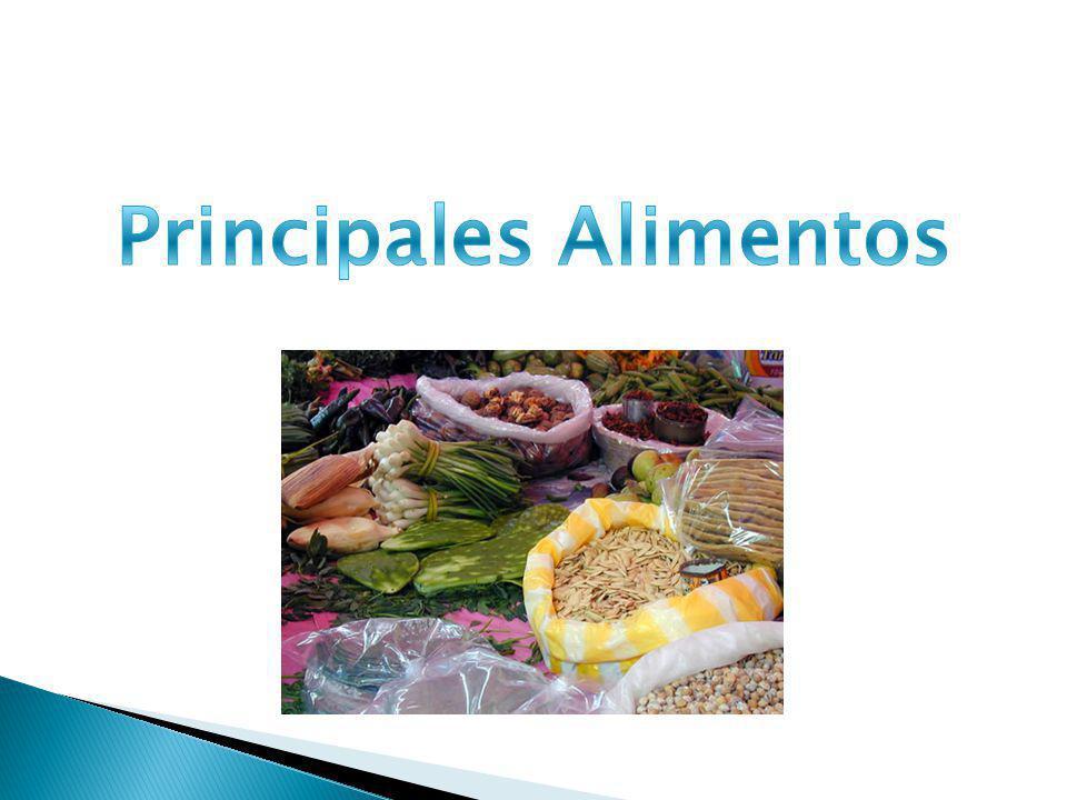 Principales Alimentos