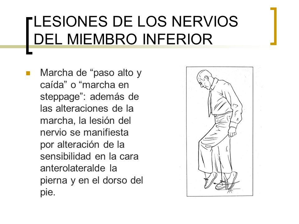 LESIONES DE LOS NERVIOS DEL MIEMBRO INFERIOR