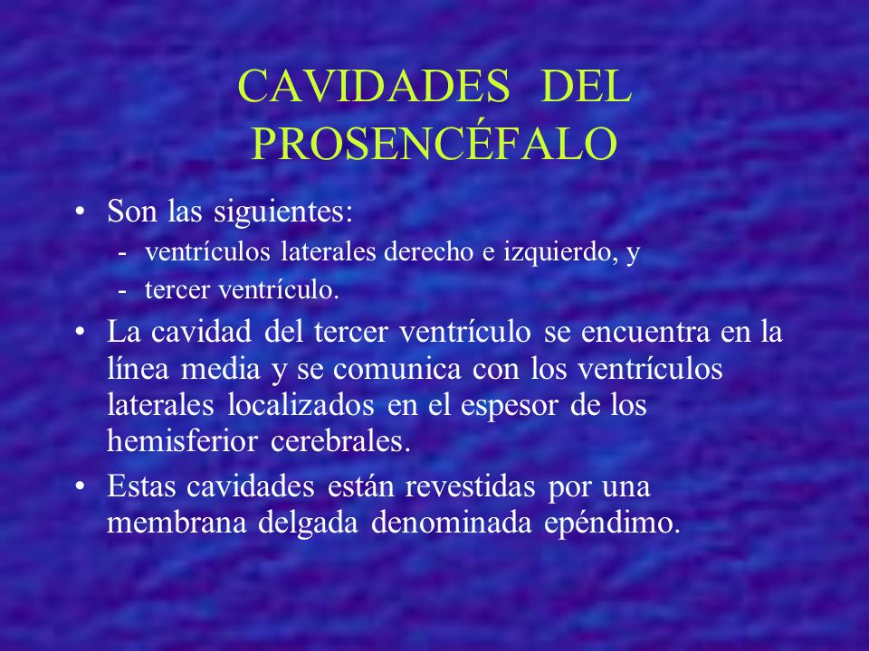 CAVIDADES DEL PROSENCÉFALO