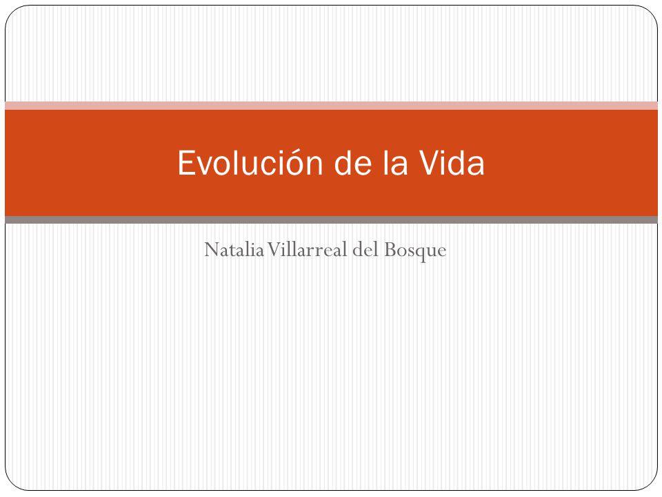 Natalia Villarreal del Bosque