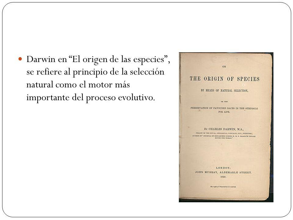 Darwin en El origen de las especies , se refiere al principio de la selección natural como el motor más importante del proceso evolutivo.