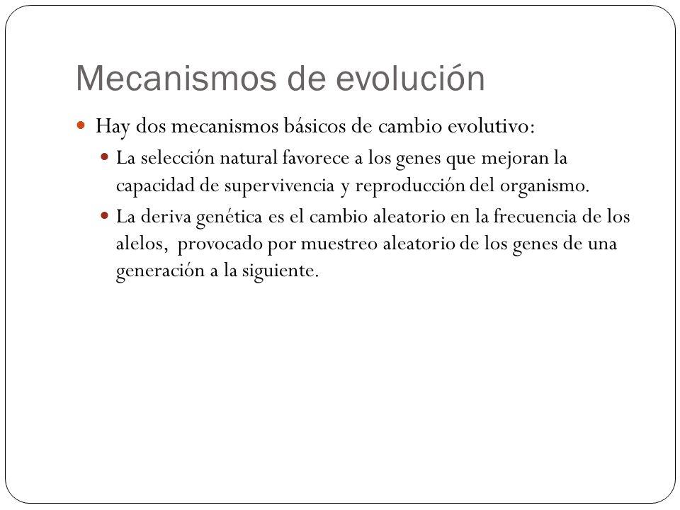 Mecanismos de evolución