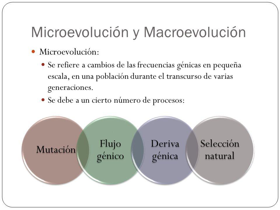 Microevolución y Macroevolución
