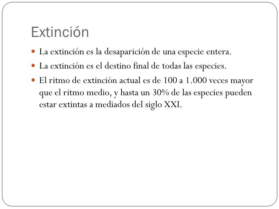 Extinción La extinción es la desaparición de una especie entera.