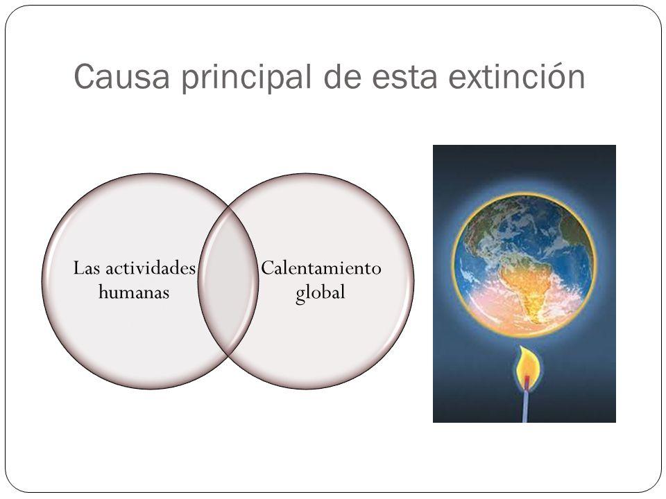 Causa principal de esta extinción