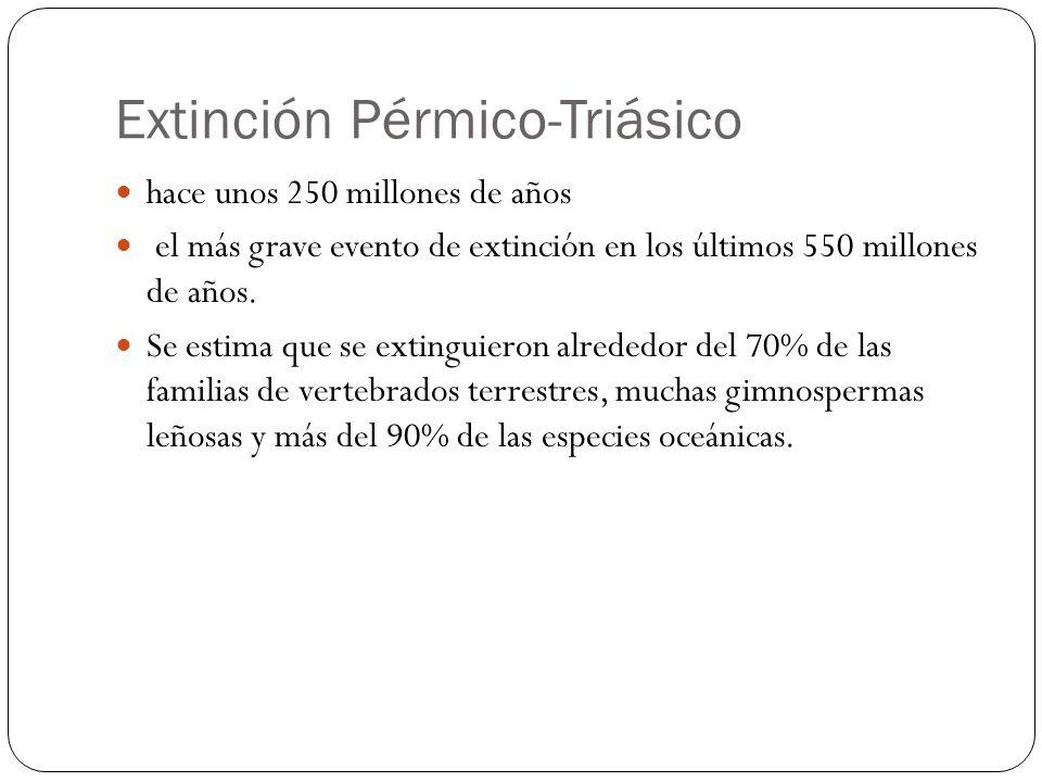 Extinción Pérmico-Triásico