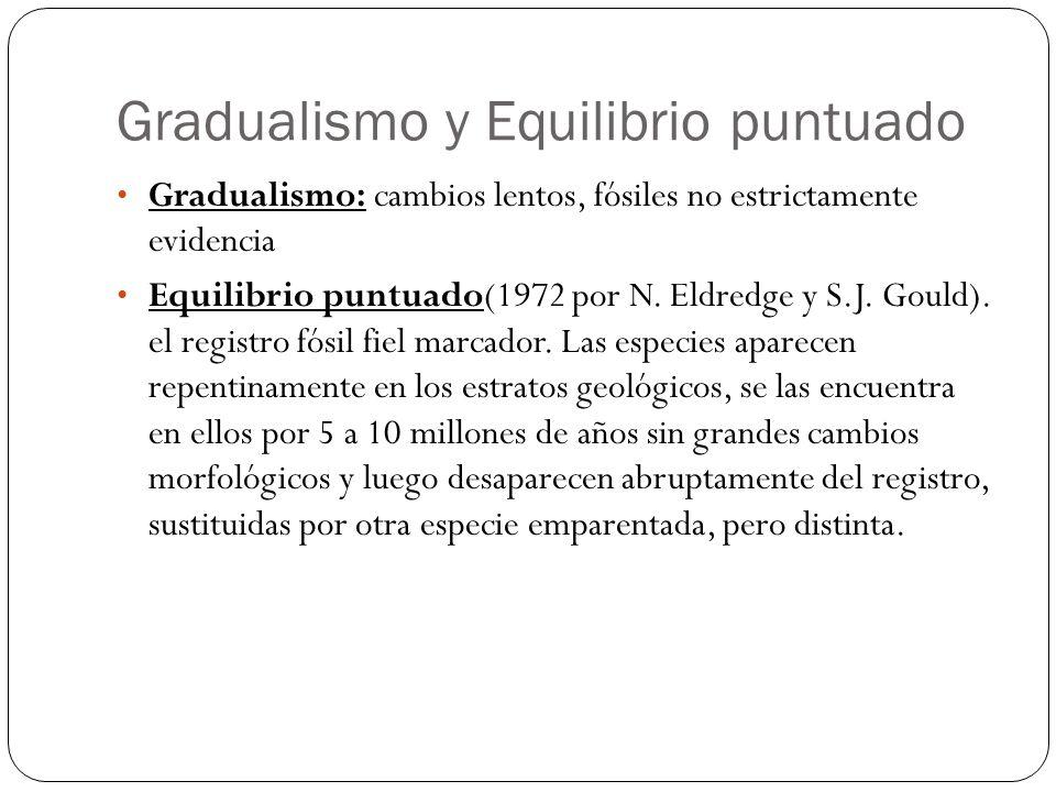 Gradualismo y Equilibrio puntuado