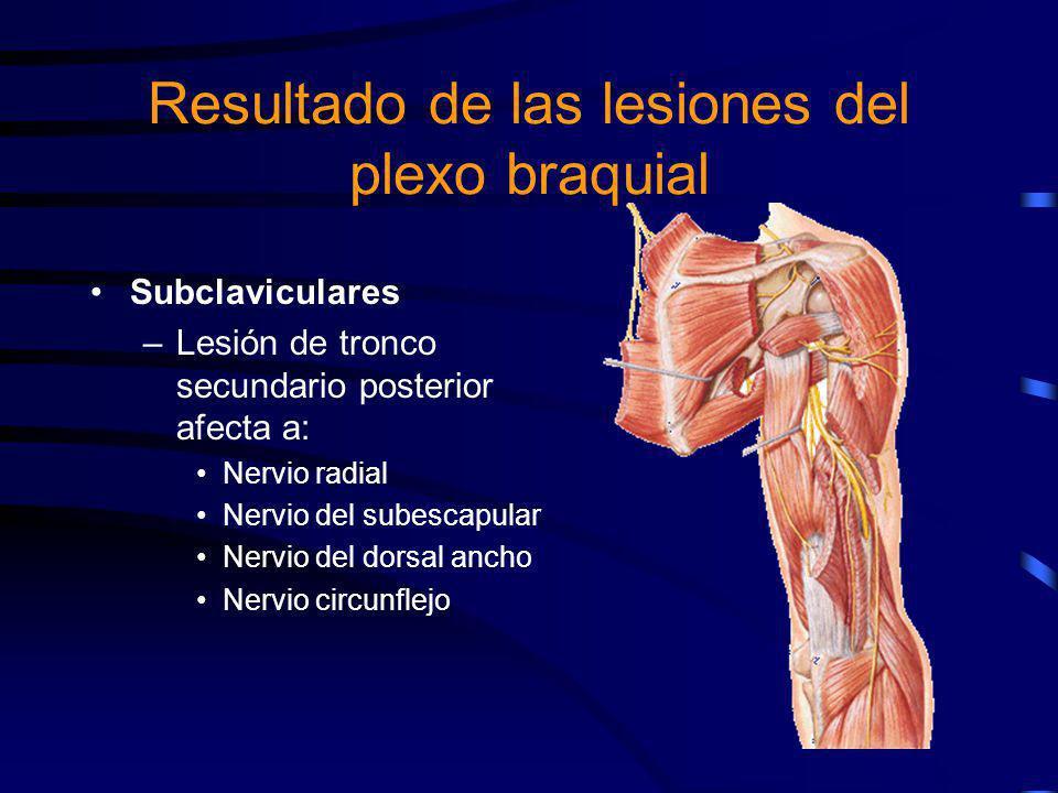 Resultado de las lesiones del plexo braquial
