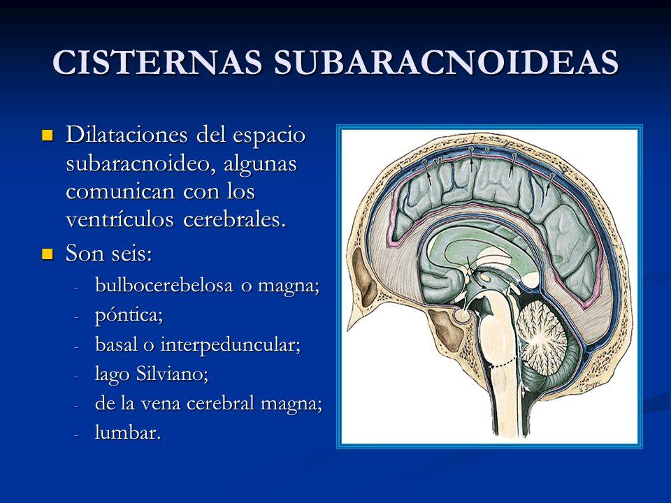 CISTERNAS SUBARACNOIDEAS