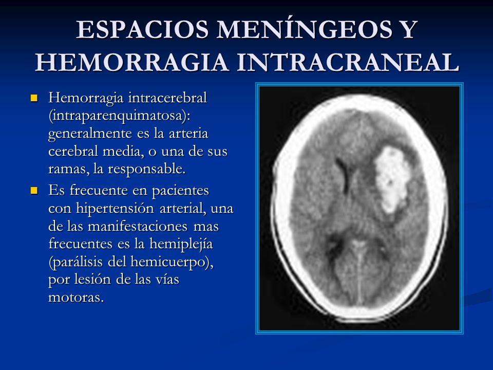 ESPACIOS MENÍNGEOS Y HEMORRAGIA INTRACRANEAL