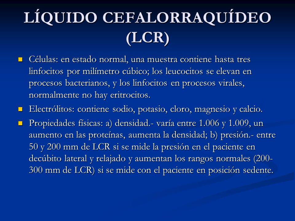 LÍQUIDO CEFALORRAQUÍDEO (LCR)