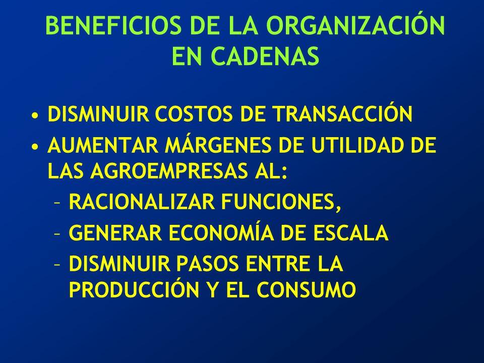 BENEFICIOS DE LA ORGANIZACIÓN EN CADENAS