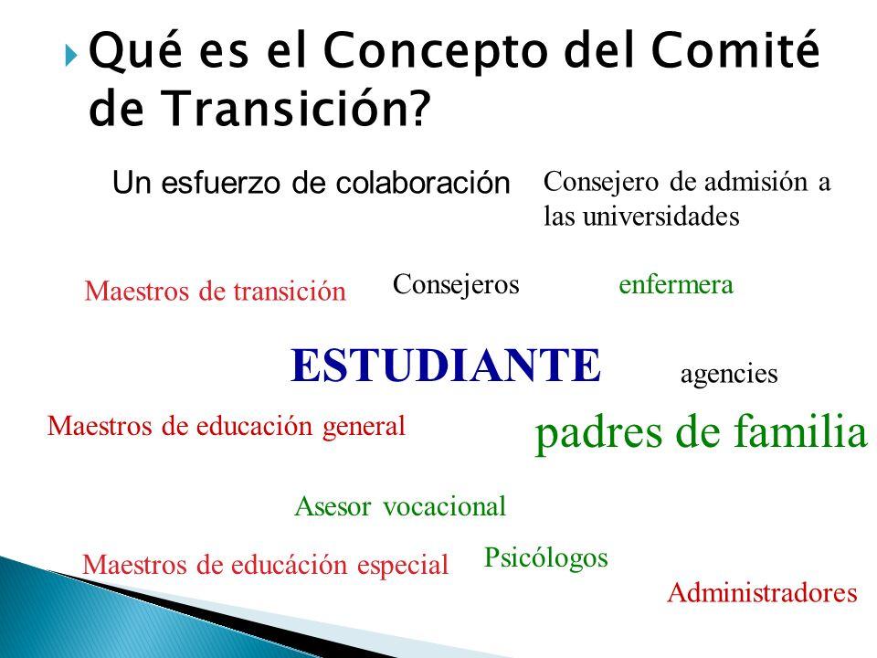Qué es el Concepto del Comité de Transición