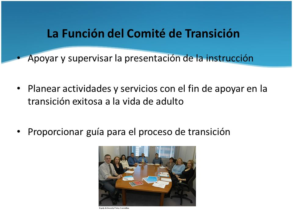 La Función del Comité de Transición