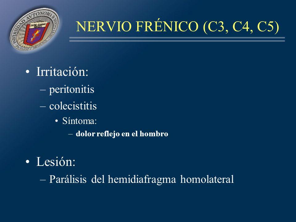 NERVIO FRÉNICO (C3, C4, C5) Irritación: Lesión: peritonitis