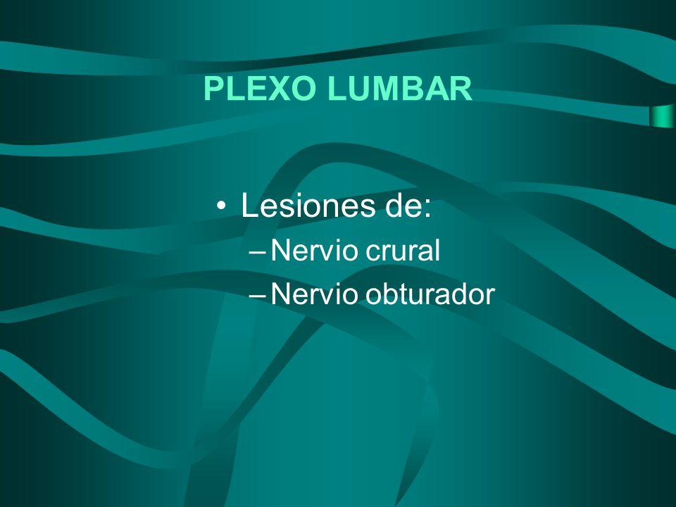 PLEXO LUMBAR Lesiones de: Nervio crural Nervio obturador
