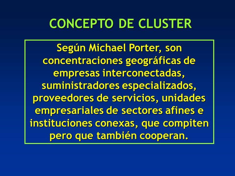 CONCEPTO DE CLUSTER