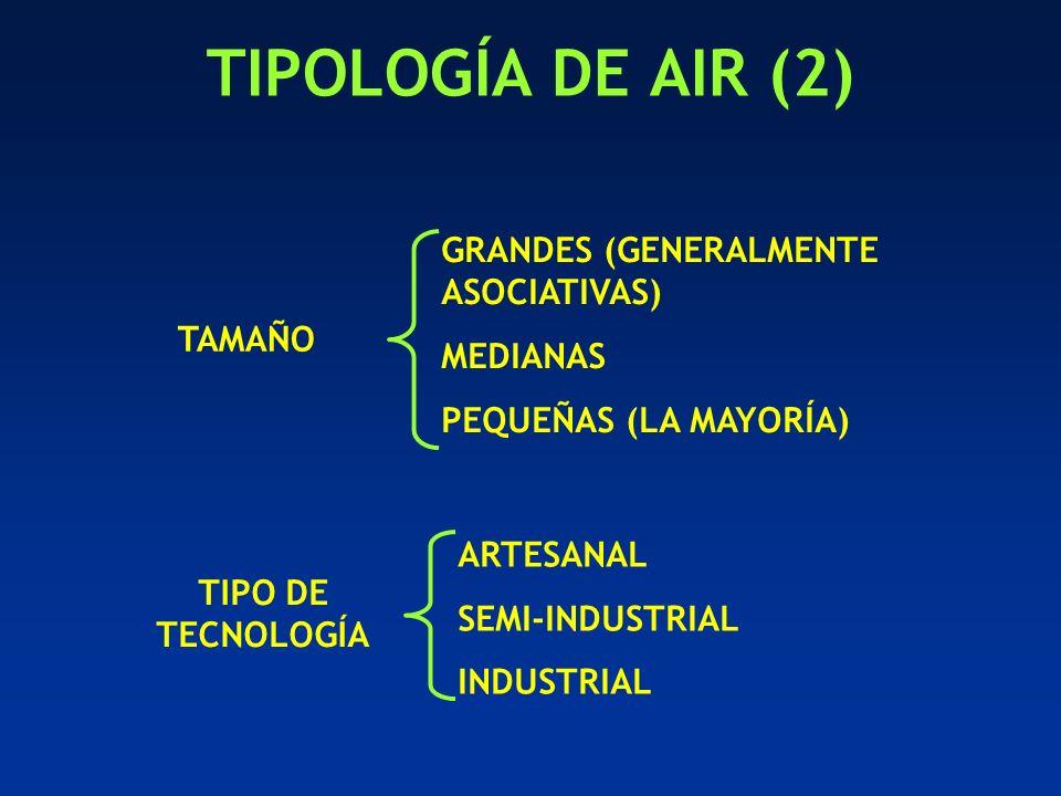 TIPOLOGÍA DE AIR (2) GRANDES (GENERALMENTE ASOCIATIVAS) MEDIANAS